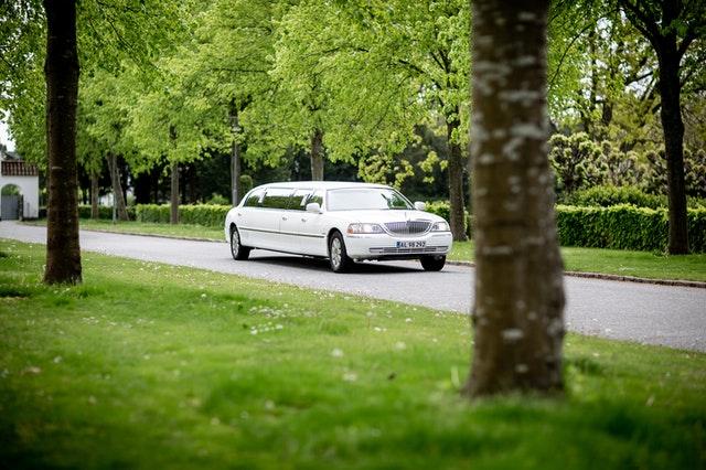 limuzyna we wrocławskim parku